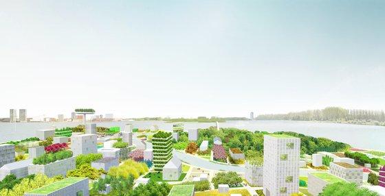 Wat kan groen voor de wereld doen?